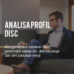 analisa profil disc